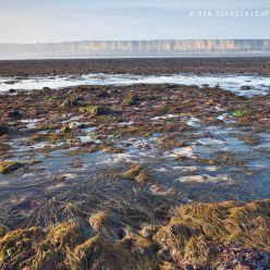 Ebbe an der Küste Normandie 9512