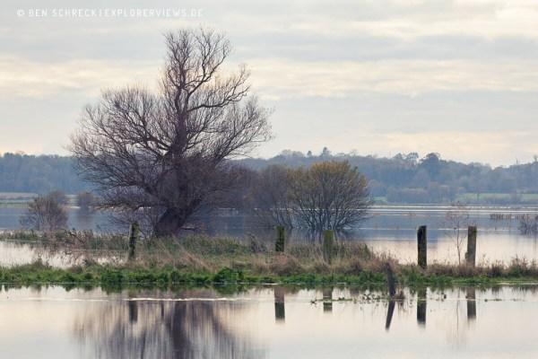 Marais im Winter Cotentin