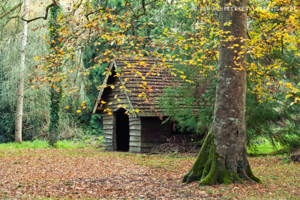 Wald Hütte 9235
