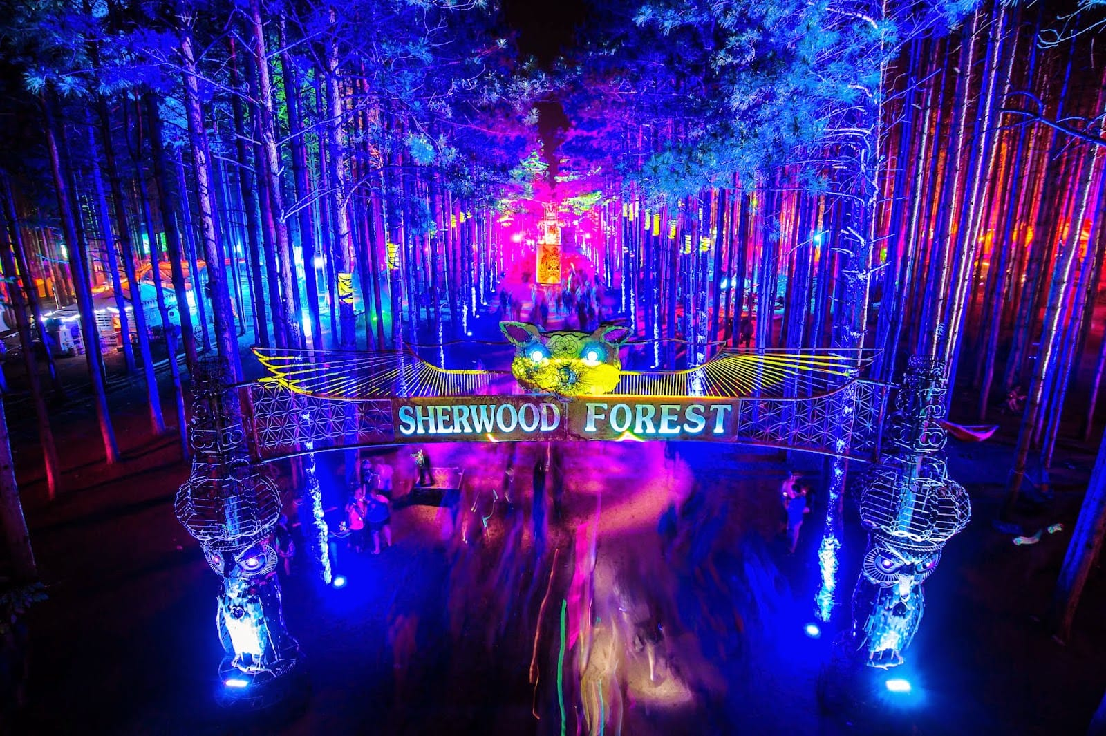 electric forest hammock camping