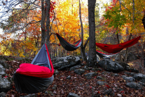 hammock camping in the autumn woods