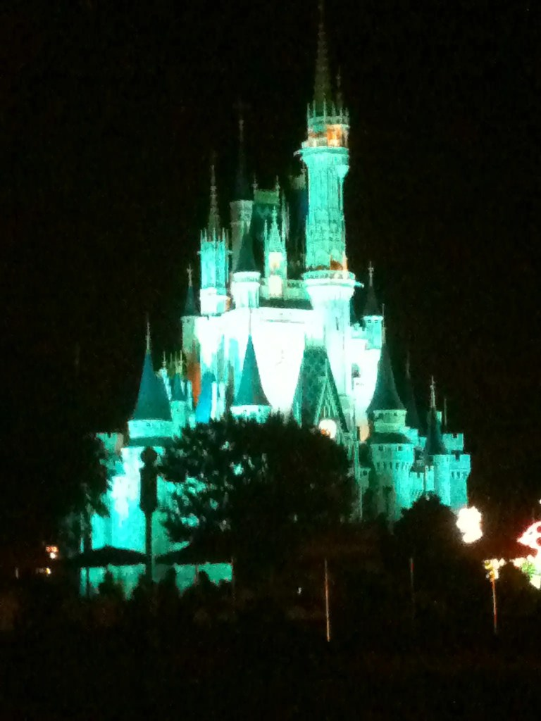 Magic Kingdom castle light up at night