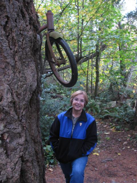 Bike in the tree on Vashon Island Washington