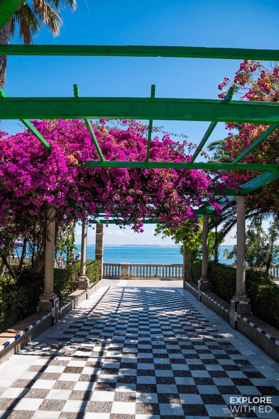 Walking tour of Cadiz through the gardens of Alameda Apodaca