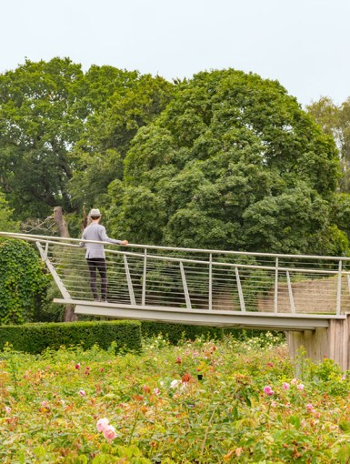 Exploring The Savill Garden in Windsor Great Park