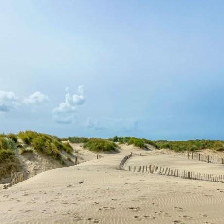 Sand dunes Barmouth beach