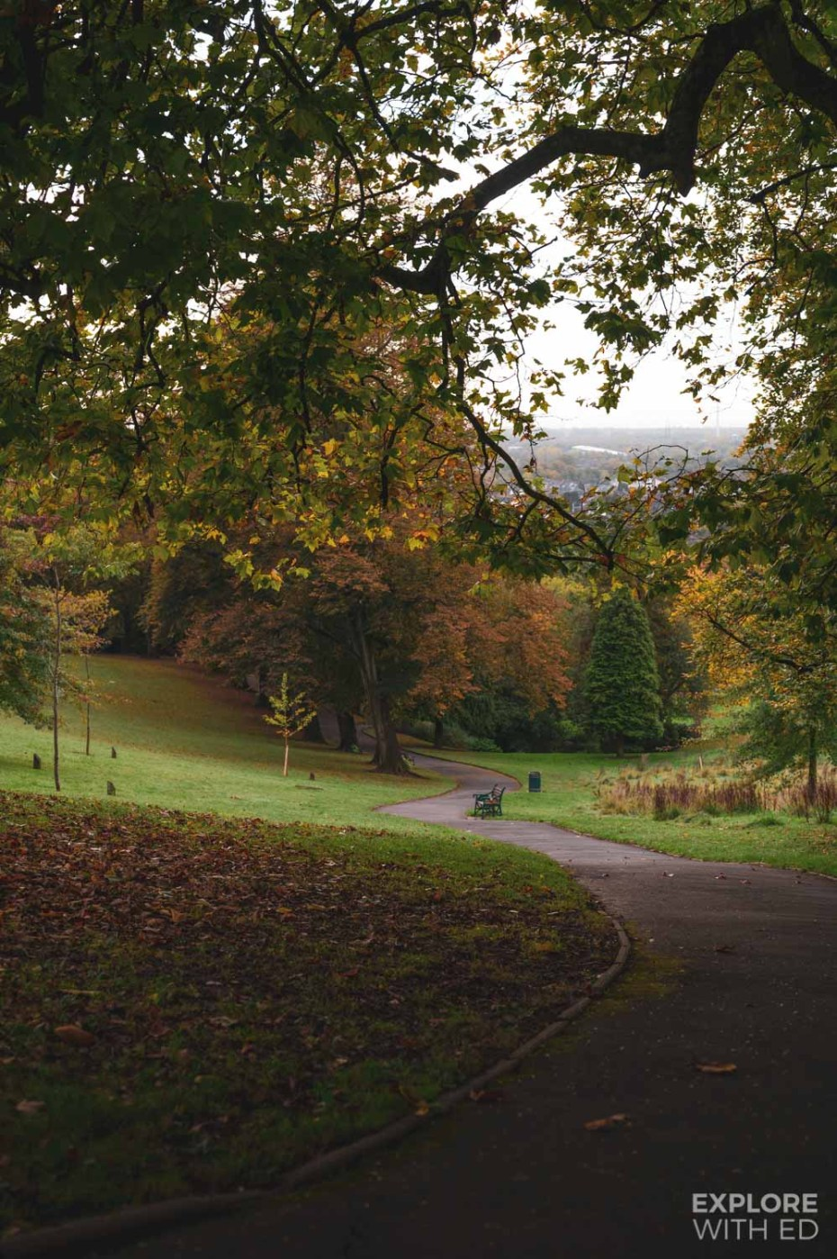 Autumn colours in Beechwood Park in Newport