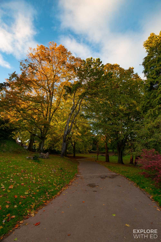 Belle Vue park pathway