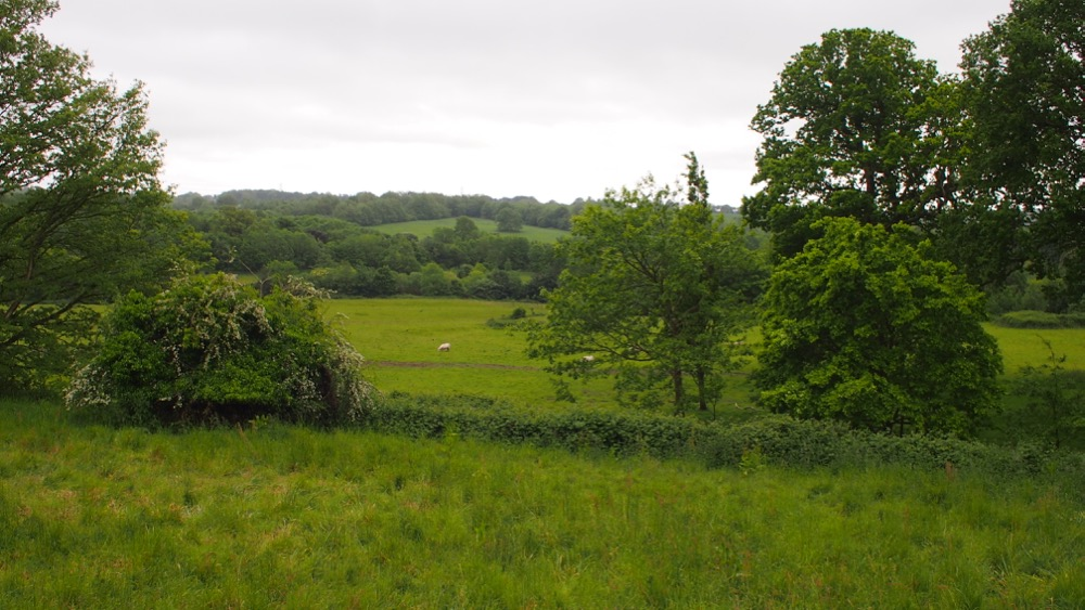 Battle of Hastings site