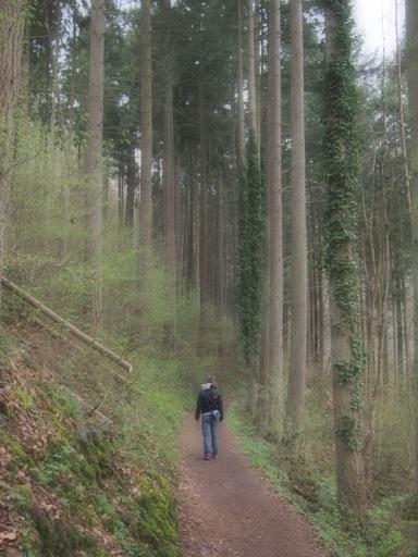 Burg Eltz Walk
