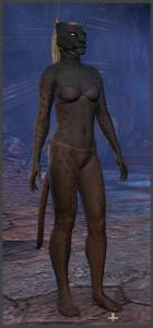 Body Markings of the Khajiit - Position 10