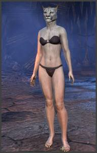 Body Markings of the Khajiit - Position 15