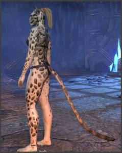 Body Markings of the Khajiit - Position 16