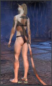 Body Markings of the Khajiit - Position 19