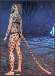 Body Markings of the Khajiit - Position 21