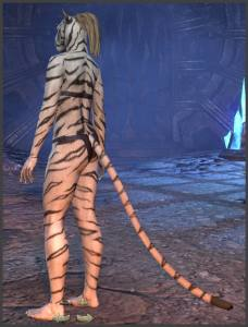 Body Markings of the Khajiit - Position 6