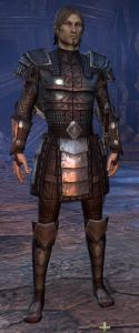 Exploring the Elder Scrolls Online - Imperial Male