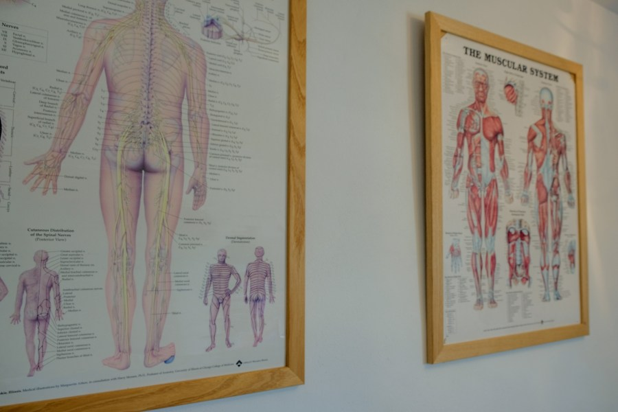 Seeking an alternative: Exploring Traditional Chinese Medicine and acupuncture in Exeter, Exploring Exeter 2019