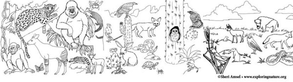 seasons coloring pages # 63
