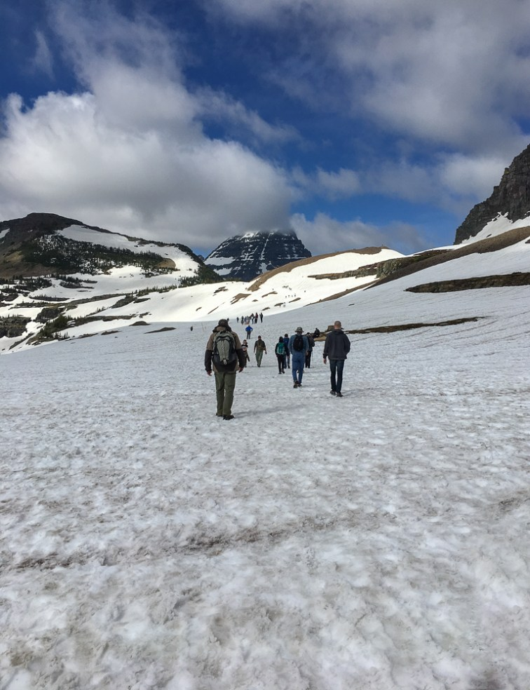 Hikers on the snow-packed trail