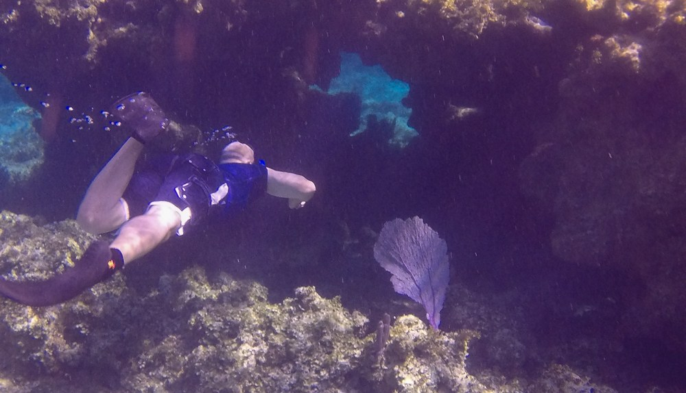 Snorkeling Eleuthera Bahamas