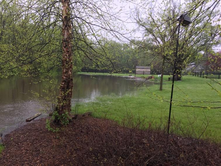 Recors Spring Rainall