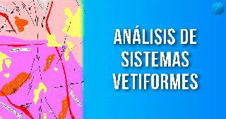 Plataforma Virtual de Geologia. Analisis de Sistemas Vetiformes EXPLOROCK