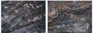 Figura 5. Tectonica Ductil a Escala Regional