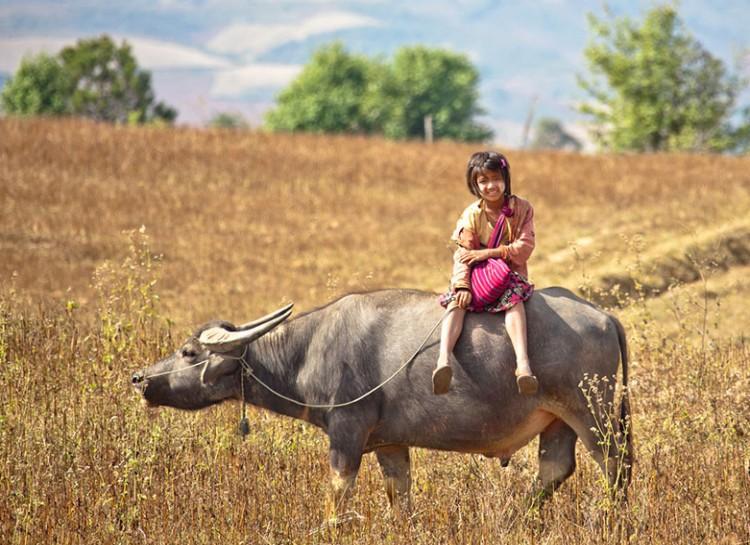 8. Myanmar