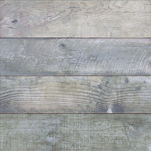 BOLOGNA GRIS 50 x 50
