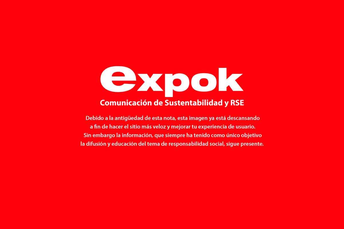 patagonia sustentabilidad
