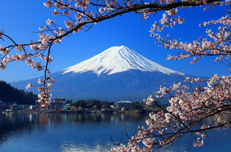 Exportar a Japon