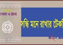 bangla grammer