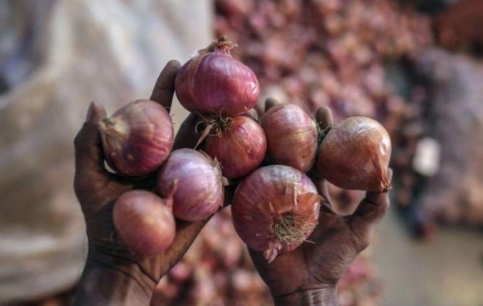 Bangladesh Onion Price Today