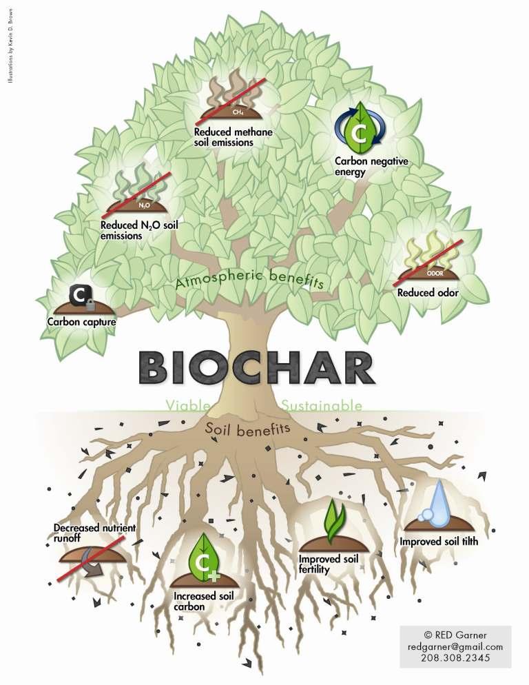 biochar-CHARTREE2