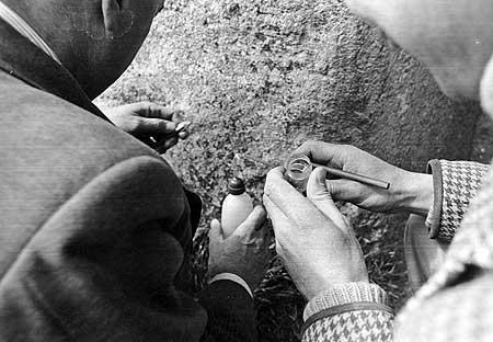 Stonehenge  (80)
