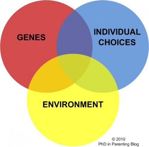 3 Questions: Evelyn Fox Keller on the nature-nurture debates