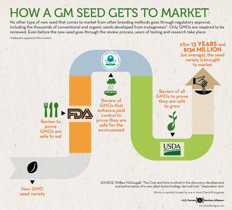 gmseed