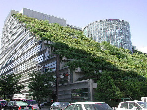 France Mandates Green Roofs On Commercial Buildings