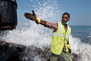 Volunteer worker helping with the chennai oil spill