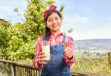 La leche es esencial en la alimentación de los niños y de los adultos, especialmente durante los primeros 25 o 30 años que es cuando se forma la masa ósea y esta proteína es la principal fuente.