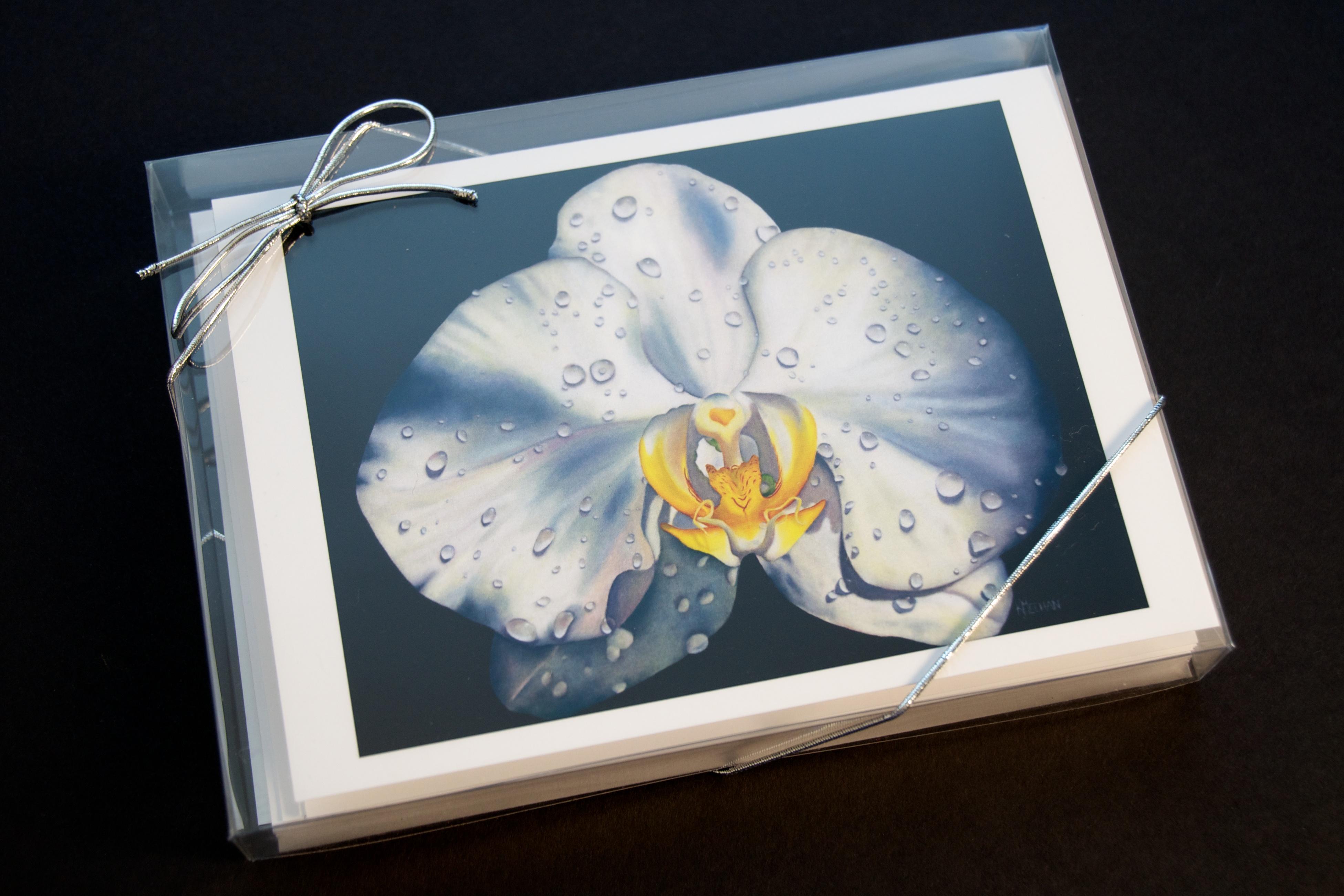 Fine art greeting cards by kerri meehan expression of art fine art greeting card set front m4hsunfo