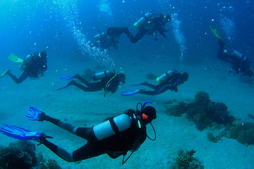 Scuba Diving in Myrtle Beach