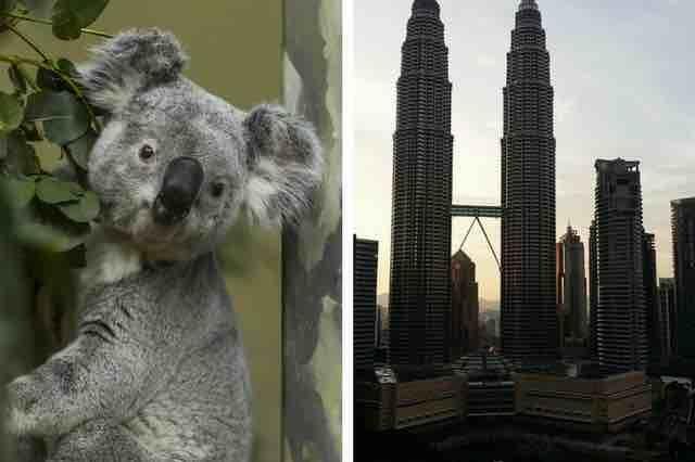 2 EN 1: AUSTRALIA Y MALASIA EN JULIO Y AGOSTO POR SÓLO 674EUROS