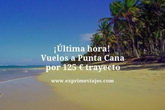 Ultima hora vuelos a Punta Cana por 125 euros trayecto