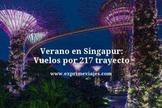 verano singapur vuelos 217 euros trayecto