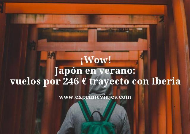 Japón-en-verano-vuelos-por-246-euros-trayecto-con-Iberia