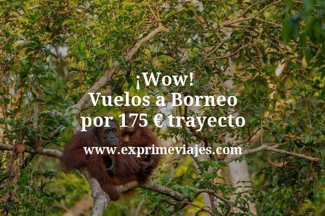 ¡Wow! Borneo: Vuelos por 175euros trayecto