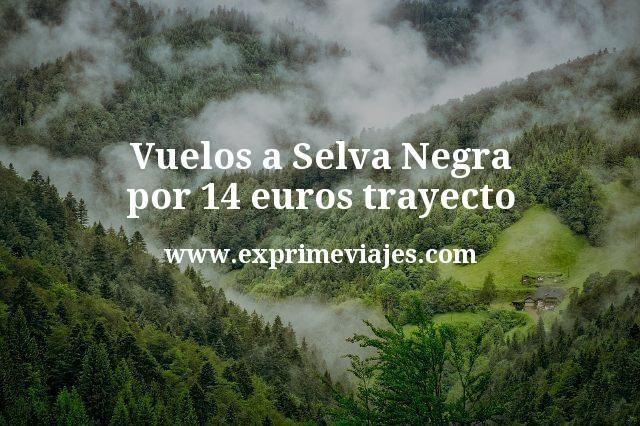 Vuelos a Selva Negra por 14 euros trayecto