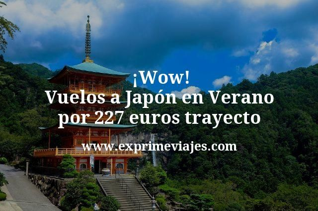 Wow Vuelos a Japon en Verano por 227 euros trayecto